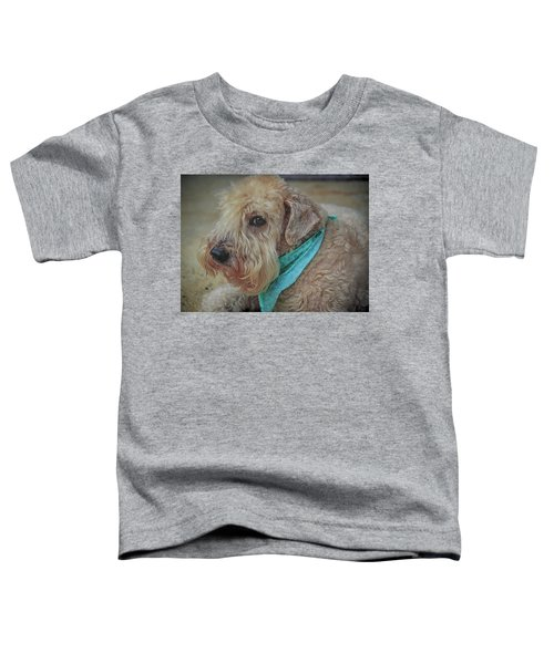 Binkley Toddler T-Shirt