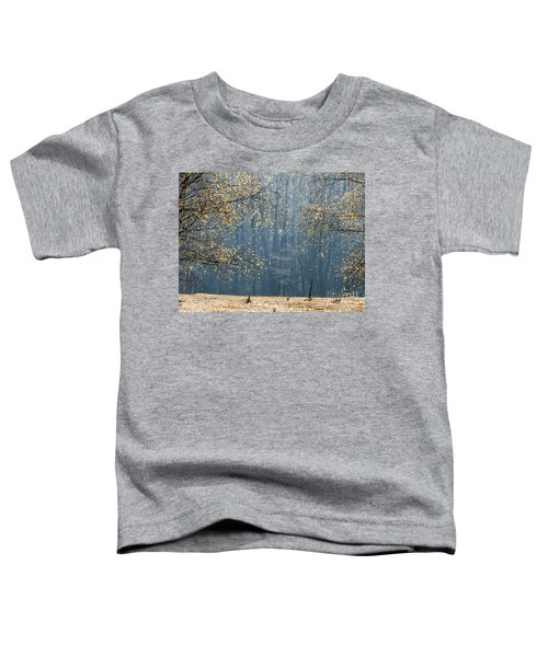 Birch Forest To The Morning Sun Toddler T-Shirt