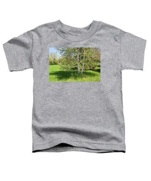 Birch Tree Toddler T-Shirt
