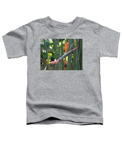 Bird Of Paradise Dripping Toddler T-Shirt