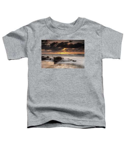 Bird Rock Clearing Storm Toddler T-Shirt
