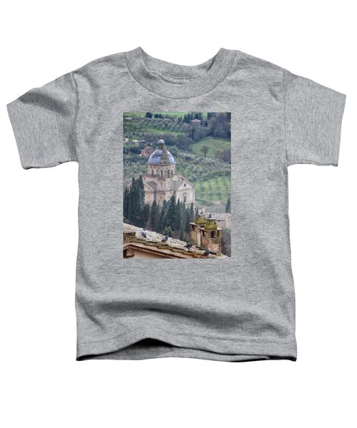 Birds Overlooking The Countryside Toddler T-Shirt
