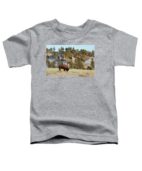 Bison In Custer State Park Toddler T-Shirt