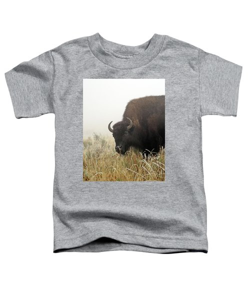 Bison In The Frosty Morning Toddler T-Shirt