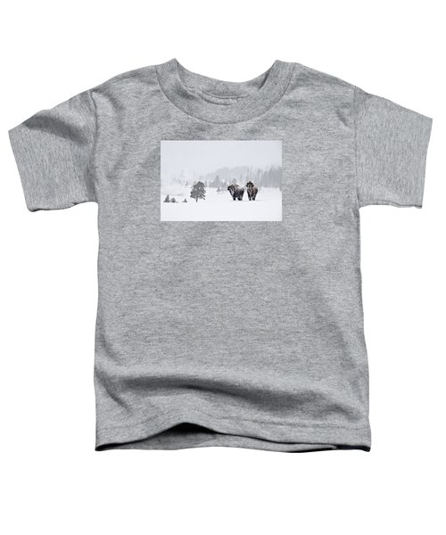 Bison In The Snow Toddler T-Shirt by Gary Lengyel