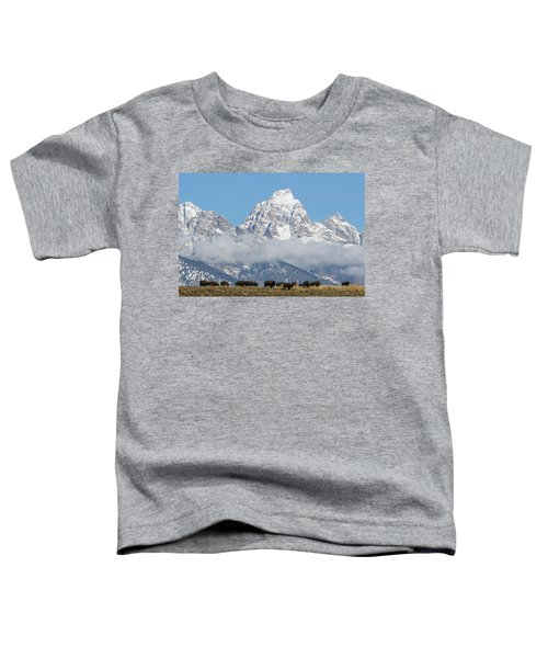 Bison In The Tetons Toddler T-Shirt