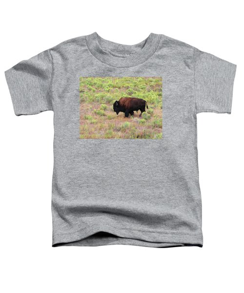 Bison1 Toddler T-Shirt