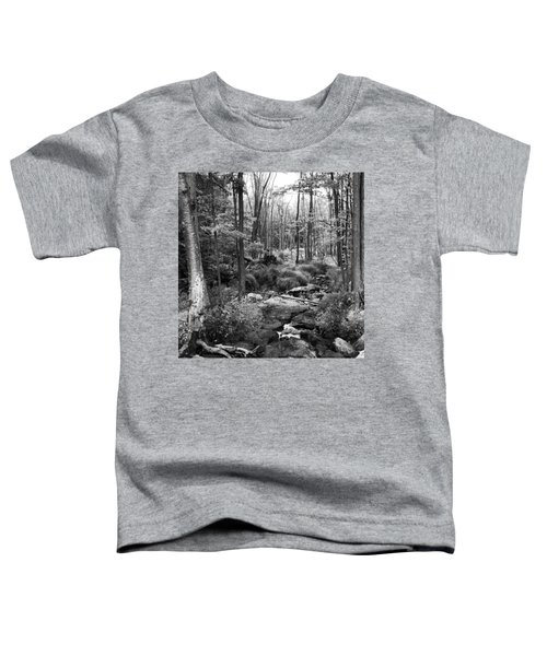 Black And White Babbling Brook Toddler T-Shirt