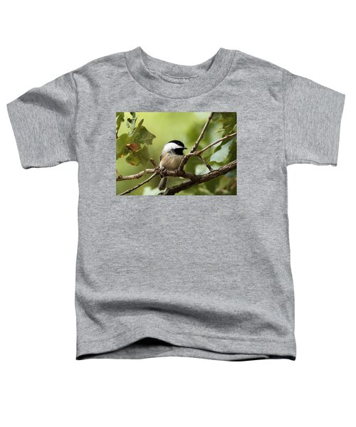 Black Capped Chickadee On Branch Toddler T-Shirt