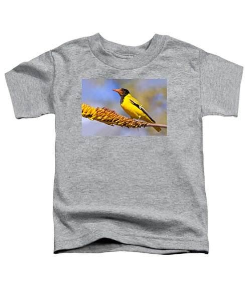 Black-headed Oriole Toddler T-Shirt