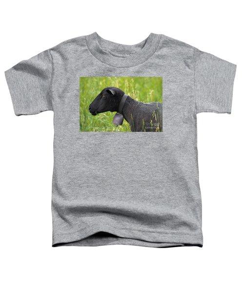 Black Sheep Toddler T-Shirt