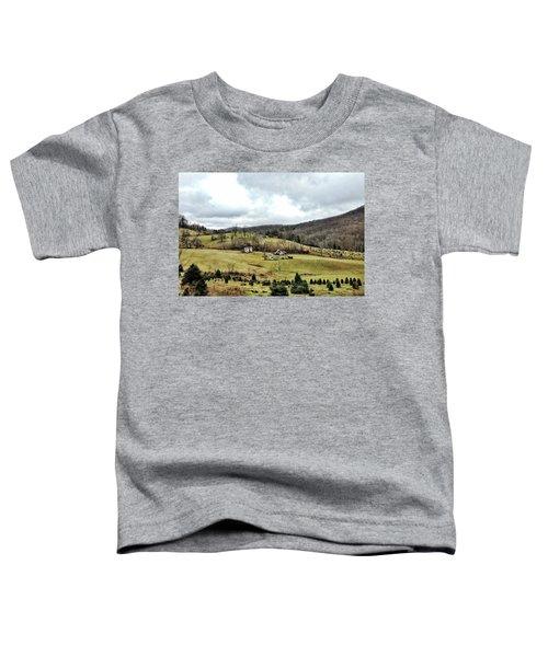 Blue Ridge Homestead Toddler T-Shirt