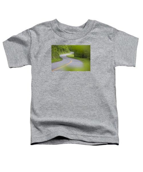 Blue Ridge Parkway Toddler T-Shirt
