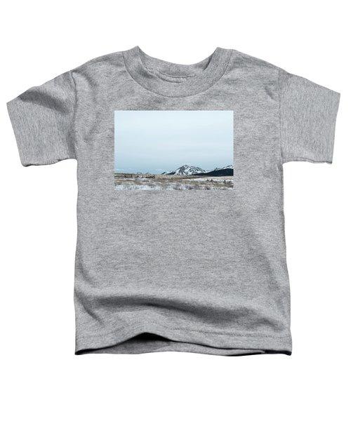 Blue Winter Toddler T-Shirt