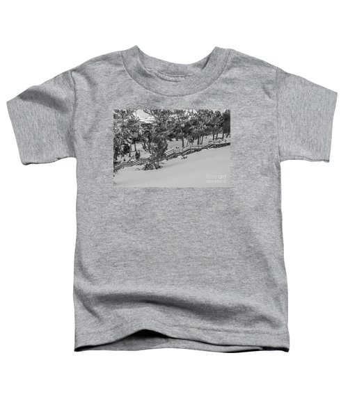 Boardwalk Climbing A Hill Toddler T-Shirt