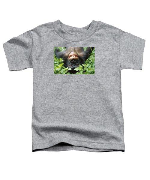 Bonobo Smiling Toddler T-Shirt