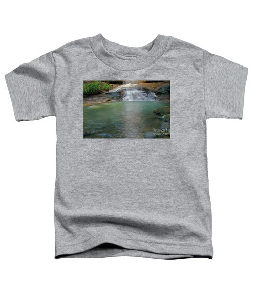 Bottom Of Falls Toddler T-Shirt
