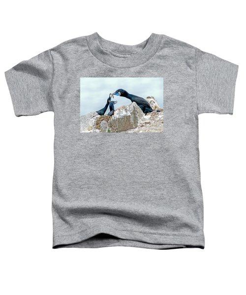 Brandt's Cormorant Feeding Family Toddler T-Shirt