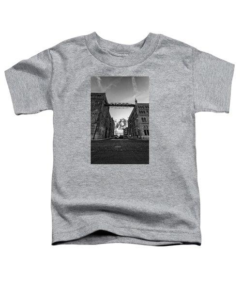 Bricks And Beer Toddler T-Shirt