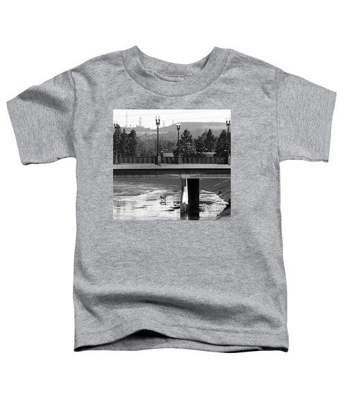 Bridge And Shopping Cart Toddler T-Shirt