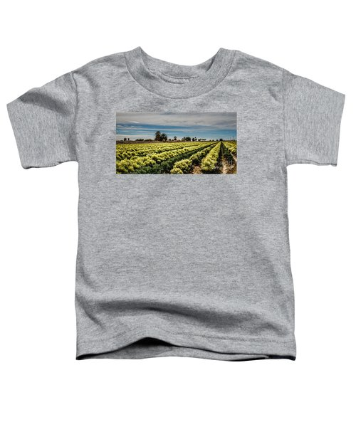 Broccoli Seed Toddler T-Shirt by Robert Bales