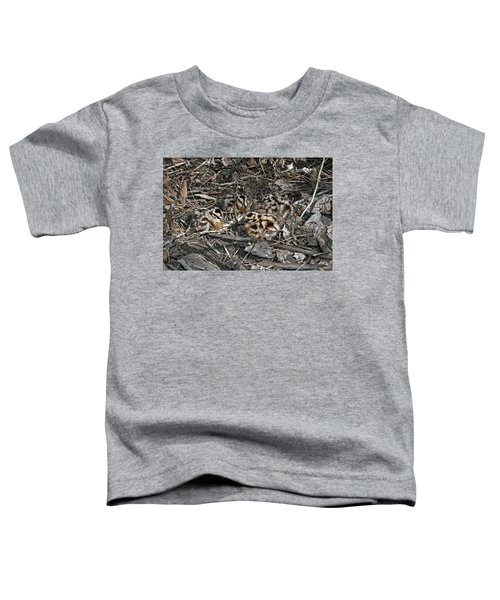 Brood Of Camouflaged American  Woodcock Chicks Toddler T-Shirt