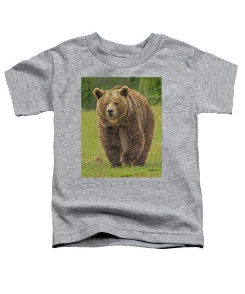 Brown Bear 1 Toddler T-Shirt