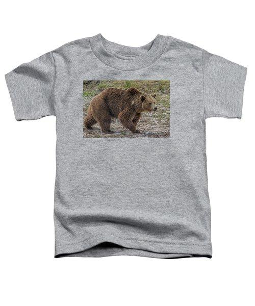 Brown Bear 6 Toddler T-Shirt
