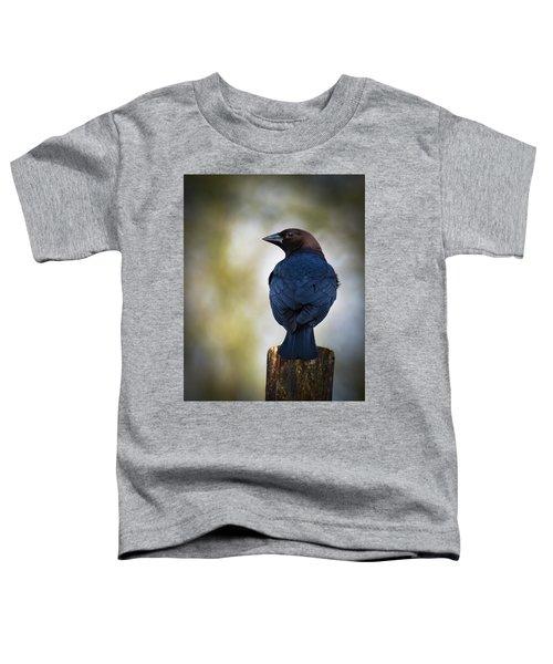 Brown-headed Cowbird Toddler T-Shirt