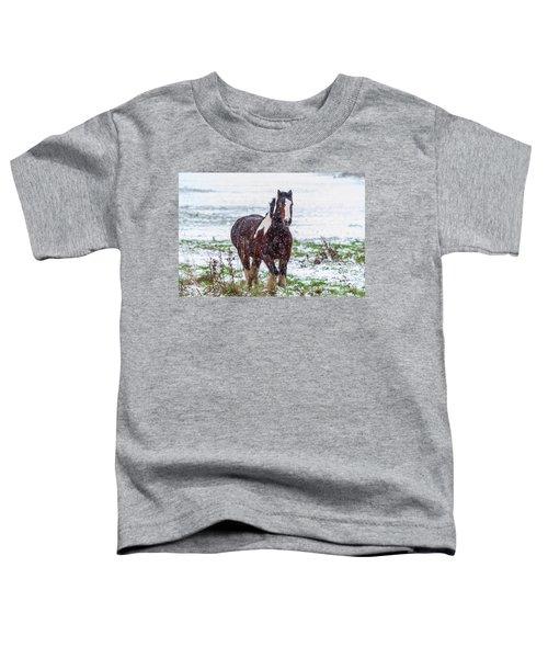 Brown Horse Galloping Through The Snow Toddler T-Shirt