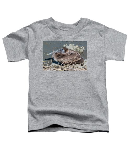 Brown Pelican 3 March 2018 Toddler T-Shirt