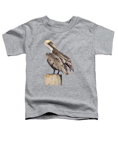 Brown Pelican - Preening - Transparent Toddler T-Shirt