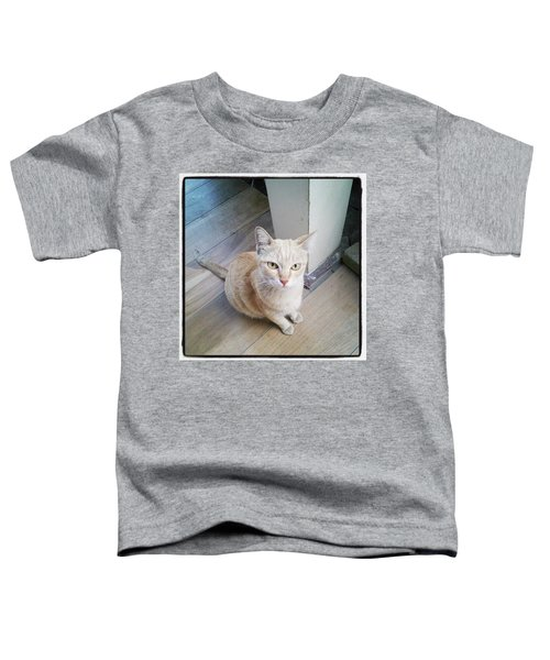 Toddler T-Shirt featuring the photograph Brunch Companion. I Couldn't Resist by Mr Photojimsf