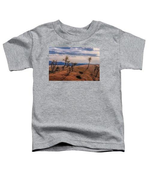 Bryce Landscape Toddler T-Shirt