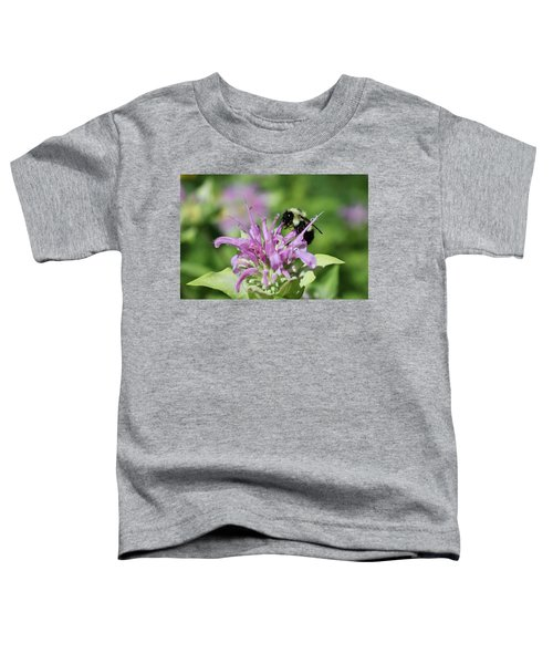 Bumblebee On Bee Balm Toddler T-Shirt