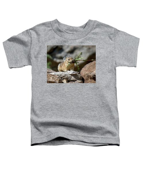 Busy As A Pika Toddler T-Shirt