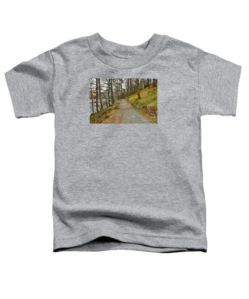 Buttermere Walks Toddler T-Shirt