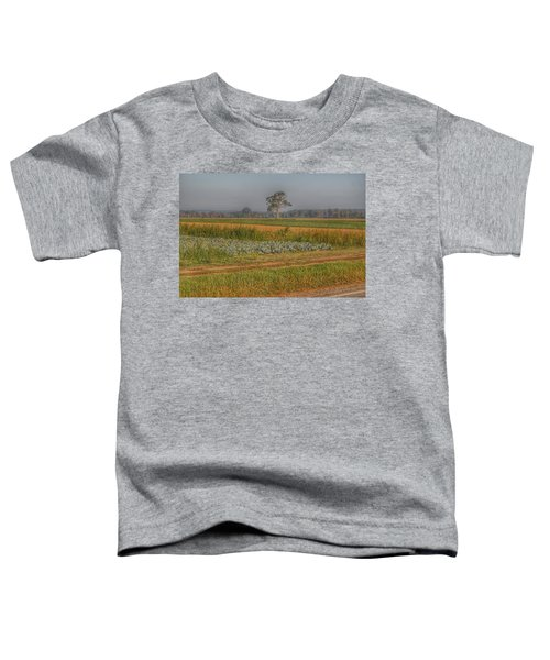 2009 - Cabbage And Pumpkin Patch Toddler T-Shirt