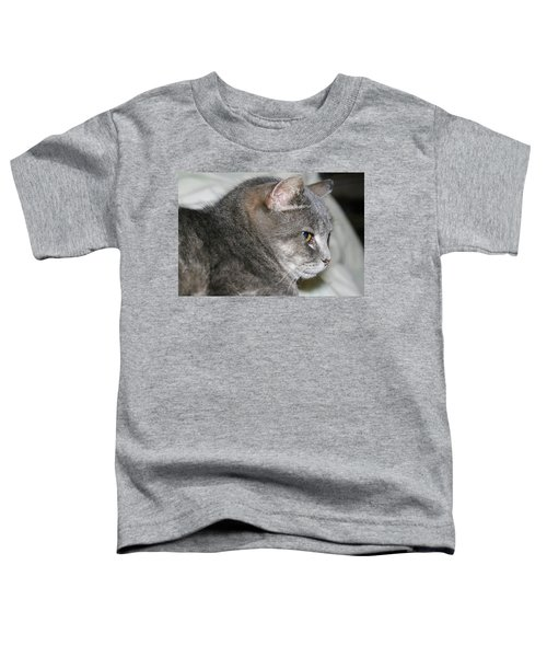 Cal-6 Toddler T-Shirt