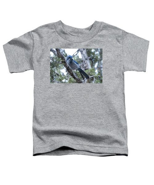 Canyon Jay Toddler T-Shirt