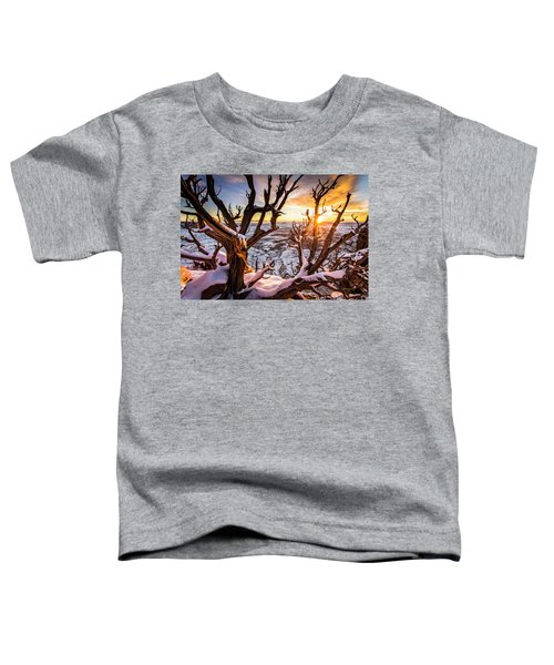 Canyonlands Winter Sunset Toddler T-Shirt