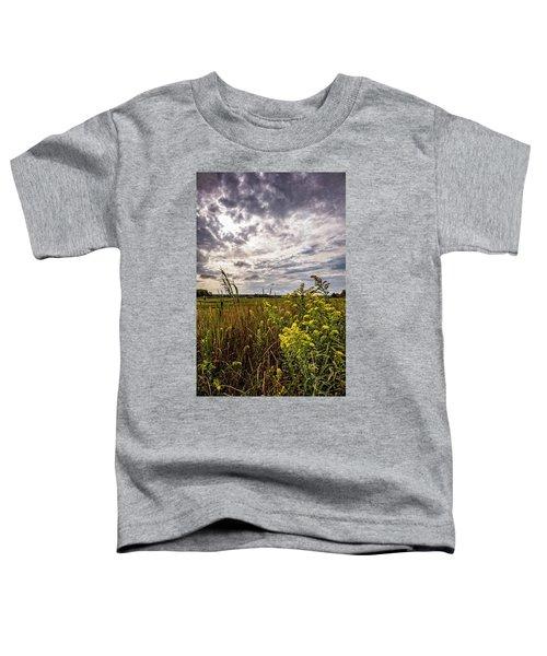 Cape Cod Marsh 4 Toddler T-Shirt