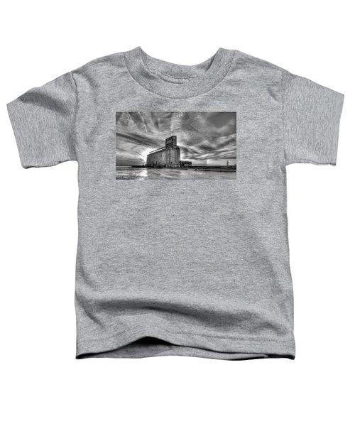 Cargill Sunset In B/w Toddler T-Shirt