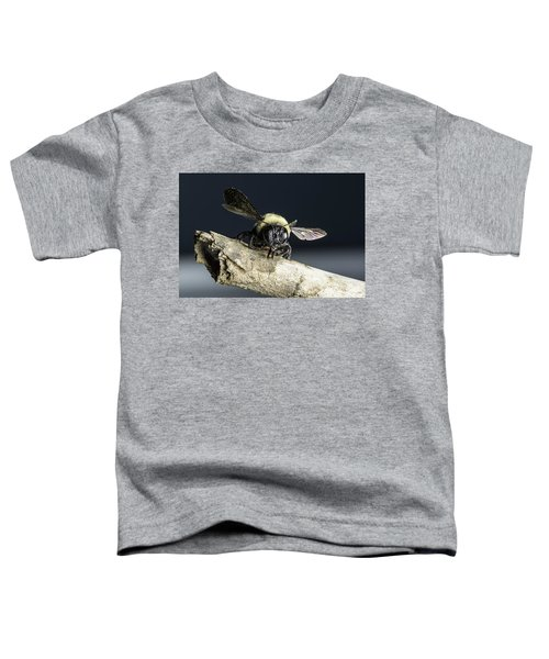 Carpenter Bee Toddler T-Shirt