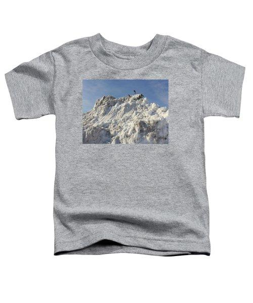 Cart Art No. 31 Toddler T-Shirt
