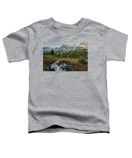 Cascade In The Alps Toddler T-Shirt