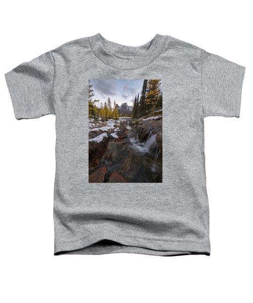 Cascading Toddler T-Shirt