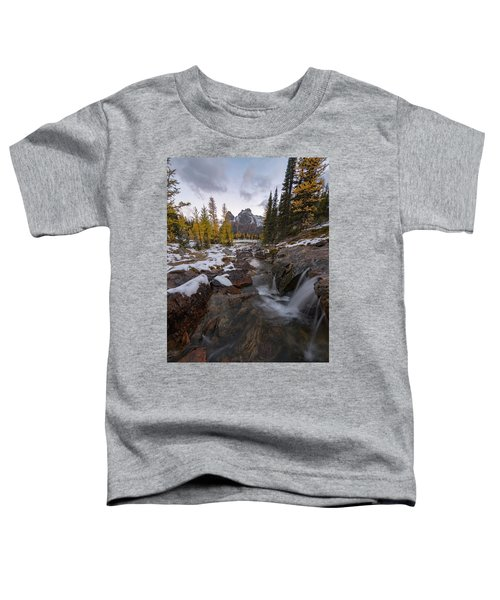 Cascading Toddler T-Shirt