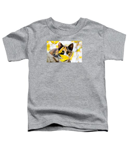 Cat On The Prowl Toddler T-Shirt by Jonny D