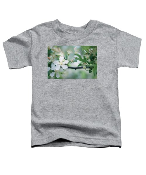 Caterpillar On A Tree Blossom Toddler T-Shirt